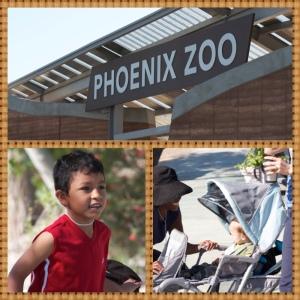 zoo pic2