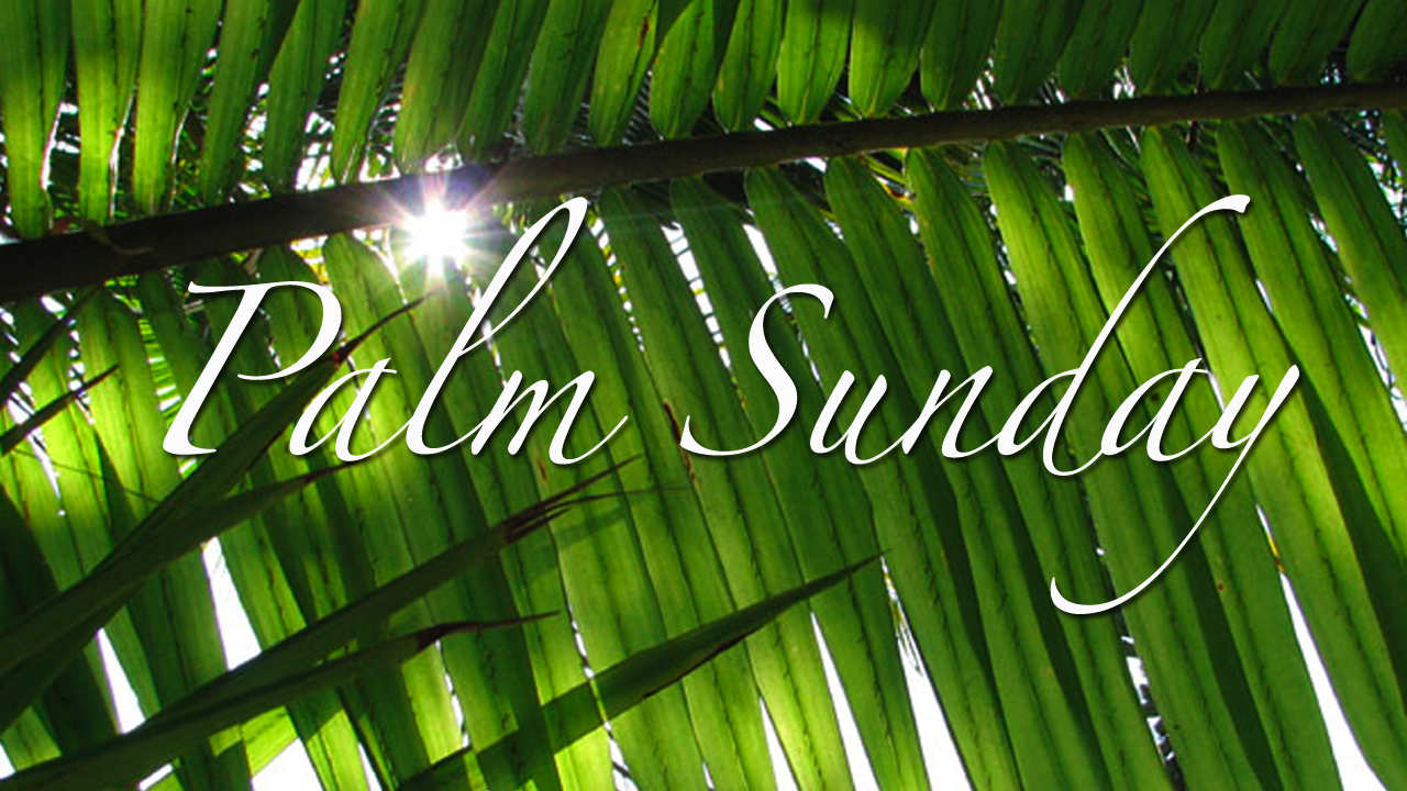 palm sunday - photo #4